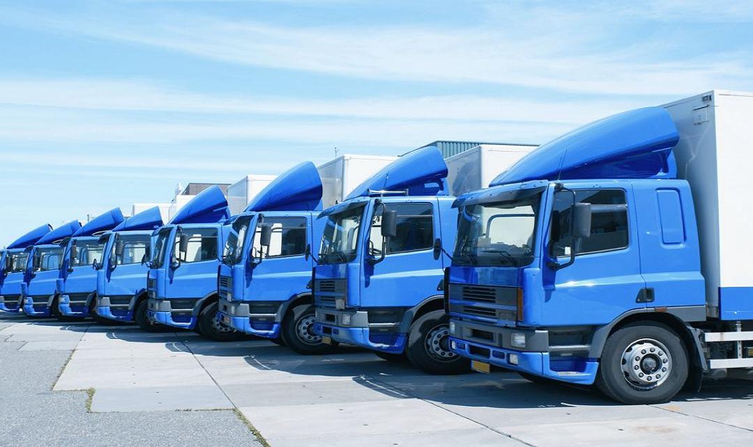 ¿Cuál es el peso máximo autorizado para Camiones?